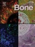 Cover of Bone journal