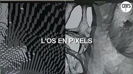 Extrait de la vidéo CNRS: L'os en pixels