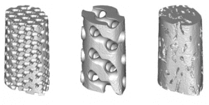 Models of porous scaffolds with different architectures